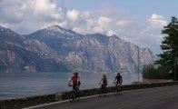 Trans Alpine mountain road
