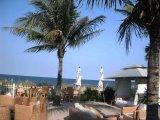 Dune ocean front restaurant at Ritz Carlton Key Biscayne 1500