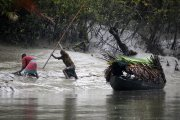 Fishermen in the Sundarbans, Bangladesh