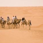 Camel Ride across Saharan Dunes