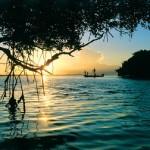 Catch at sunset